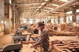 Thực trạng ngành gỗ Việt Nam năm 2017